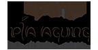 Pia Agung Bali Logo